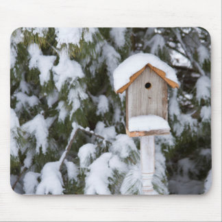 Birdhouse near pine tree in winter mouse pad