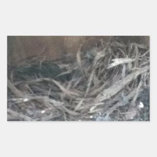 Birdhouse Nest Rectangular Sticker