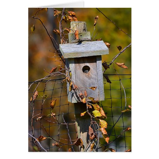 Birdhouse Notecard Tarjeta Pequeña