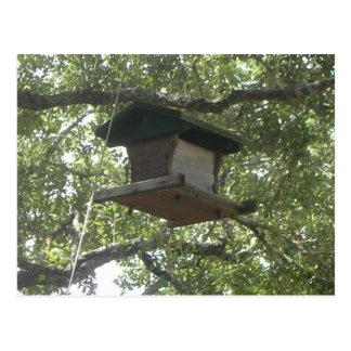 Birdhouse - Postcard