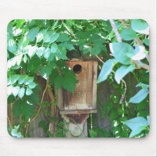Birdhouse Tapete De Raton