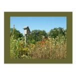 Birdhouse & Wildflowers Post Cards