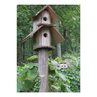 Birdhouse with Grapes Poster