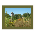 Birdhouse y Wildflowers Postal