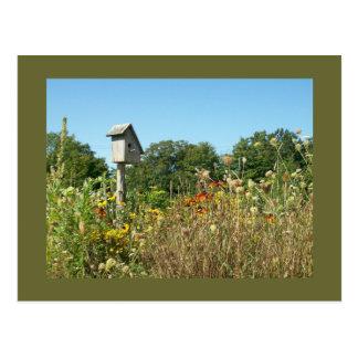 Birdhouse y Wildflowers Tarjetas Postales