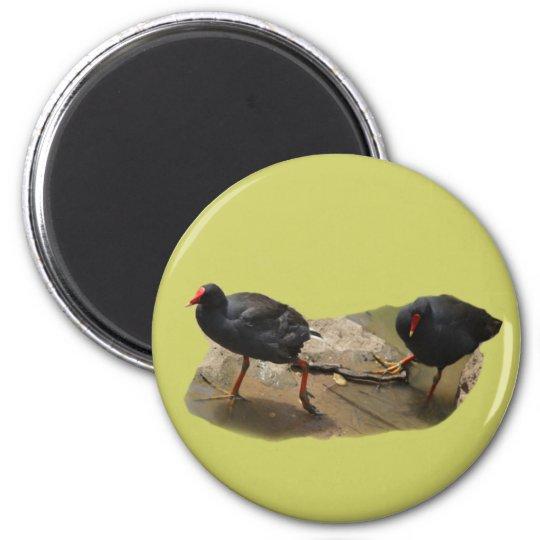 Birdie 2 Inch Round Magnet