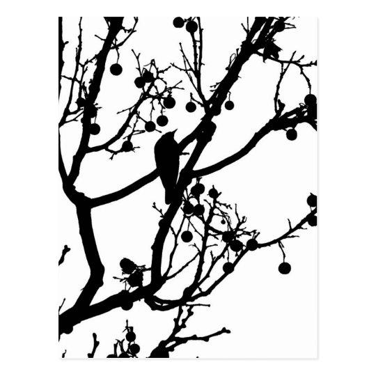 Birdie 4 postcard