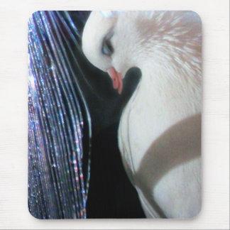 Birdie Boy - Angel Mouse Pad