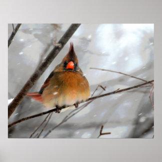 Birdie In The Blizzard - Canvas Print