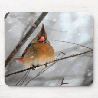 Birdie In The Blizzard - Mousepad