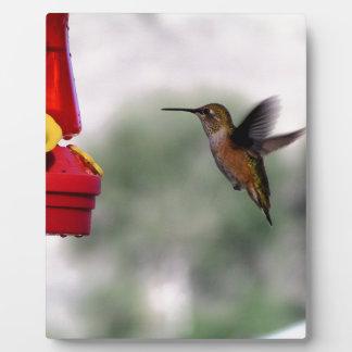 Birdie Yum-Yums Plaque