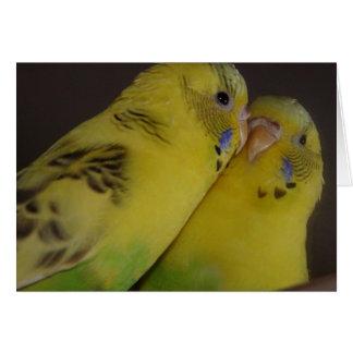 BirdieBird Tarjeta