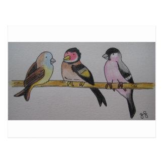 Birdies on a Twig Postcard