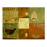 Birdies Postcard