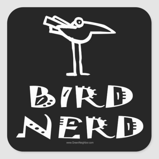 Birding, Birdwatching, ornitología Colcomanias Cuadradases