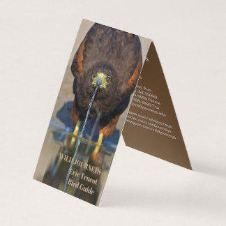 Birding Guide Hawk Business Card