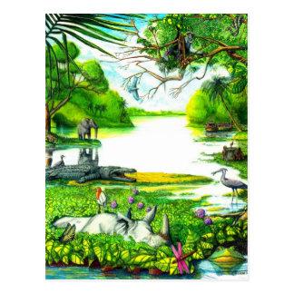 Birdlife - Postcard