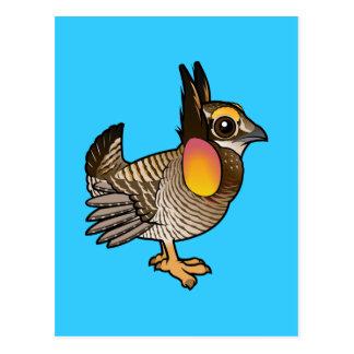Birdorable Attwater's Prairie Chicken Postcard