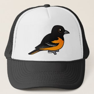 Orange These Baltimore Orioles Cute In New Birds Orioles