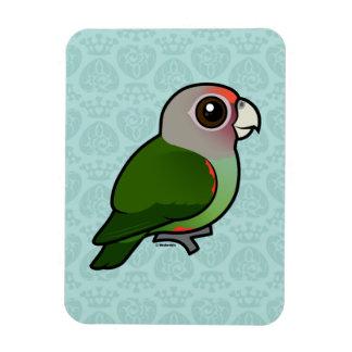 Birdorable Brown-necked Parrot Magnets