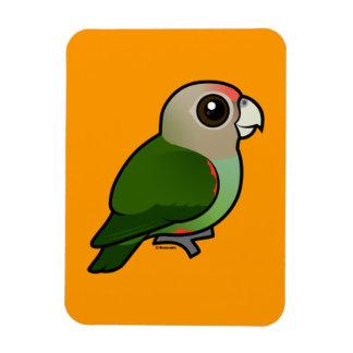 Birdorable Cape Parrot Rectangle Magnets