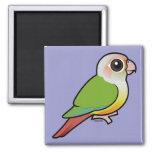 Birdorable Cinnamon Green-cheeked Conure 2 Inch Square Magnet