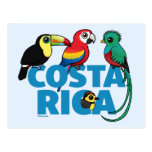 Birdorable Costa Rica Postcard