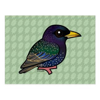 Birdorable European Starling Postcard