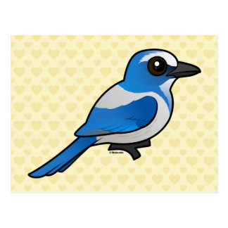 Birdorable Florida Scrub-Jay Postcard