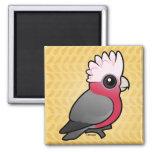 Birdorable Galah 2 Inch Square Magnet