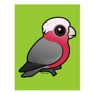 Birdorable Galah Postcard