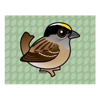 Birdorable Golden-crowned Sparrow Postcard