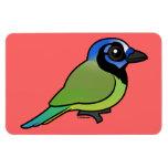 Birdorable Green Jay Flexible Magnets