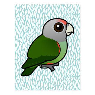 Birdorable Grey-headed Parrot Postcard