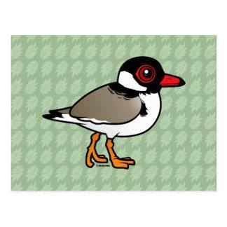 Birdorable Hooded Plover Postcard