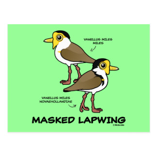 Birdorable Masked Lapwing subspecies Postcard