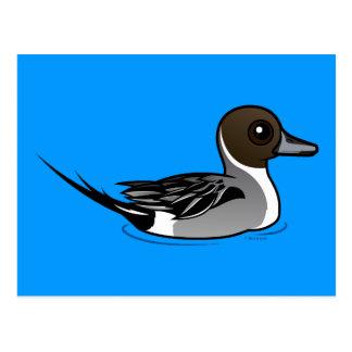 Birdorable Northern Pintail Postcard