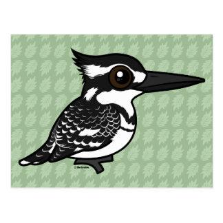 Birdorable Pied Kingfisher Postcard
