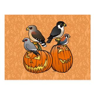Birdorable Raptors on Pumpkins Postcard