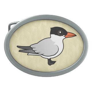 Birdorable Royal Tern Oval Belt Buckles