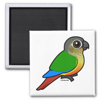 Birdorable Yellow-sided Conure 2 Inch Square Magnet