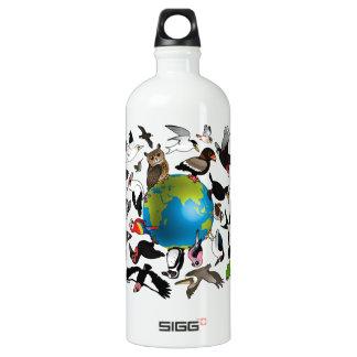 Birdorables Around the World Aluminum Water Bottle