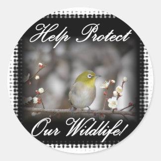 Birds--0002BirdYellowHeadOnLimb Classic Round Sticker