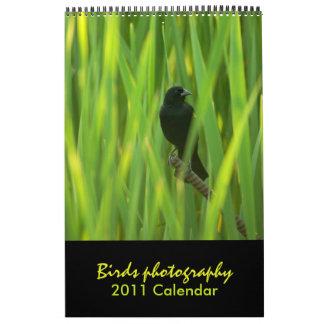 Birds 2011 Calendar