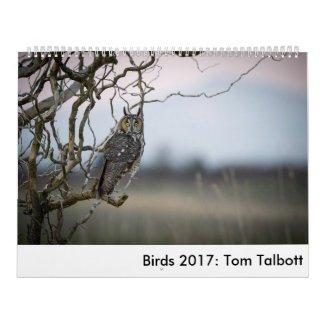 Birds 2017: Tom Talbott