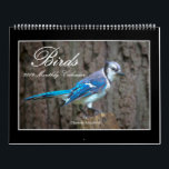 """Birds 2019 Monthly Calendar By Thomas Minutolo<br><div class=""""desc"""">I love the challenge of capturing birds of all kinds in their natural environment. I hope that you enjoy these images!</div>"""