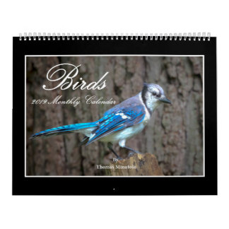 Birds 2019 Monthly Calendar By Thomas Minutolo