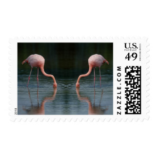 Birds 316 postage