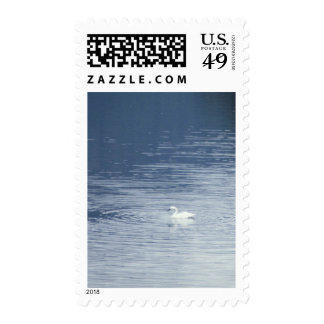 Birds 323 postage stamps