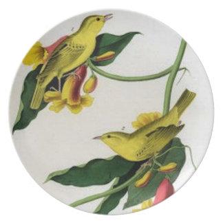 Birds #9 Plate